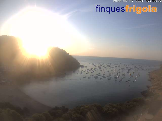 Webcam of Tamariu beach
